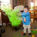 Wordless Wednesday – Norton's Easter Grass Extravaganza